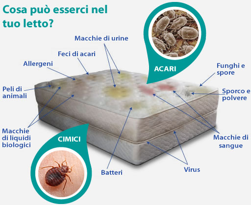 Lavaggio pulizia e disinfezione dei materassi con l 39 ozono - Come eliminare cimici del letto ...